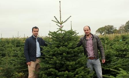 Timo & Christian Schwartz von Pflanzenhandel Schwartz